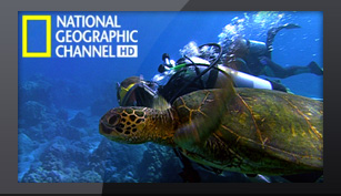 Триколор National Geographic HD